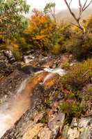 Crater Creek, Cradle Mountain National Park