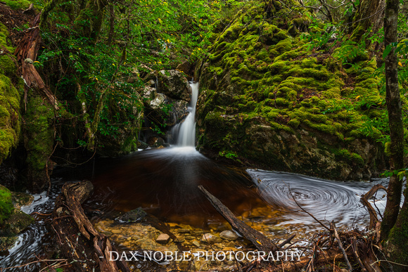 Crater Creek Falls, Cradle Mountain National Park